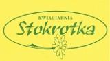 Logo firmy TELEKWIATY -   KWIACIARNIA STOKROTKA