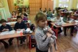 Szkoła - Łowicz