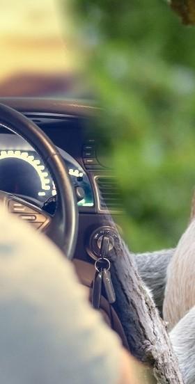 """Czy jesteś """"Januszem"""" za kierownicą?"""