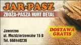 Logo firmy Jar-Pasz