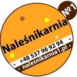 Logo firmy Naleśnikarnia nr1