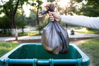 Czy potrafimy segregować śmieci? Wiele osób robi to źle