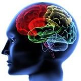 Logo firmy EEG BIOFEEDBACK MGR.MAŁGORZATA WYSOKIŃSKA