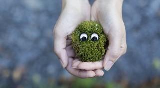 Czy jesteś ekologicznym szkodnikiem? To możesz zrobić dla środowiska!