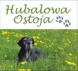 Logo firmy Hotel dla Psów Hubalowa Ostoja