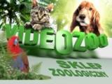 Logo firmy Internetowy Sklep Zoologiczny videozoo.pl