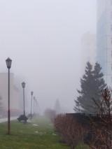Smog Żywiec