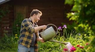 Co trzeba wiedzieć o ogrodnictwie?