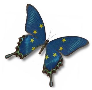 Co wiesz o Unii Europejskiej i jej członkach? Ten quiz cię zaskoczy!