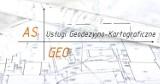 Logo firmy AS-GEO Usługi Geodezyjno-Kartograficzne Agata Szpecińska