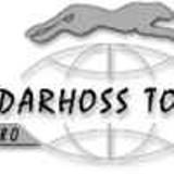 """Logo firmy DARHOSS TOUR"""" Biuro Usług Turystycznych"""