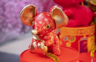 Co cię czeka w Roku Szczura? Horoskop quizowy 2020