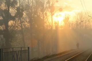 Smog we Wrocławiu - sytuacja na osiedlach NA ŻYWO