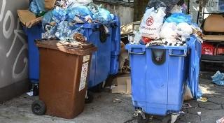 Prawidłowo segregujesz śmieci?