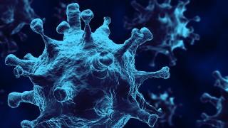 Zapytaj o koronawirusa. Odpowiada m.in wirusolog i prawnik