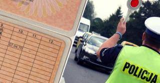 Co oznaczają kody na prawie jazdy?