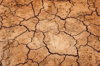 Zmiany klimatyczne w najbliższym czasie. Dotkną rolnictwo?