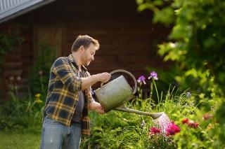 Test wiedzy o ogrodnictwie. To musisz wiedzieć!