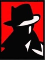 Logo firmy FENIX Biuro Detektywistyczne