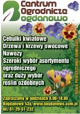 Logo firmy Centrum Ogrodnicze Bogdanowo