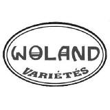 Logo firmy Woland Varietes