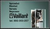 Logo firmy Serwis Vaillant Szczecin - Naprawa pieców gazowych Zachodniopomorskie/Szczecin