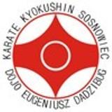 Logo firmy Sosnowiecki Klub Karate Kyokushin