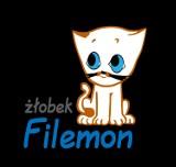 "Logo firmy żłobek ""Filemon"""