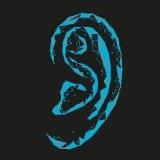 Logo firmy Punkt Diagnostyki Słuchu a.d.audio
